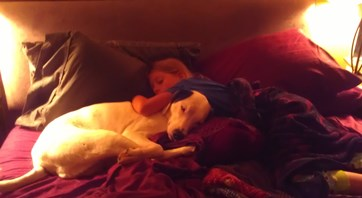snuggle morning photo by shannon mayhew